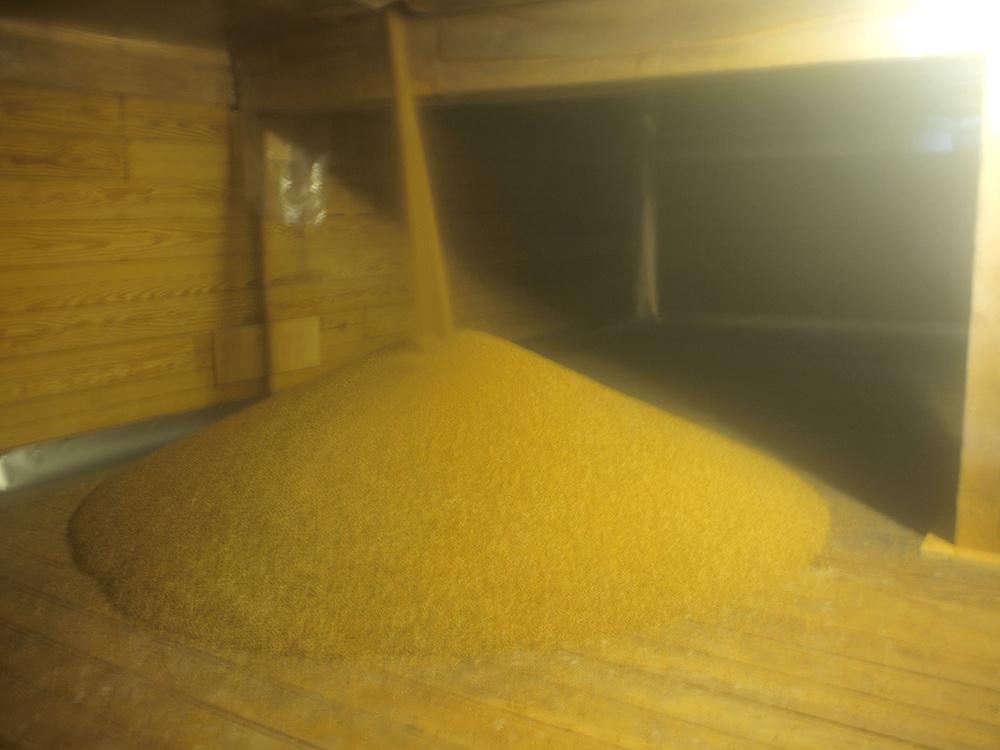 grain-into-storage.jpg