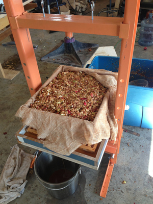pomace+in+the+rack+and+cloth.jpg