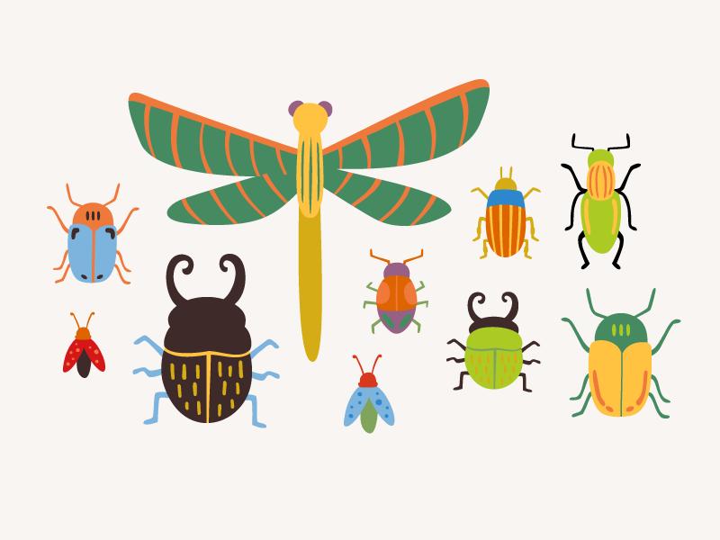 Fall-Bugs.png