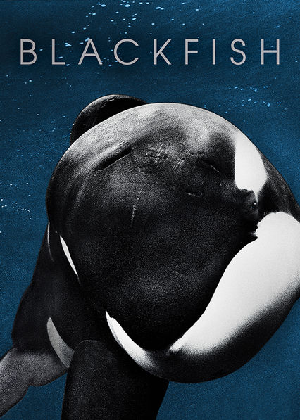 This fascinating documentary examines the life of performing killer whale Tilikum, who has caused the deaths of several people while in captivity.