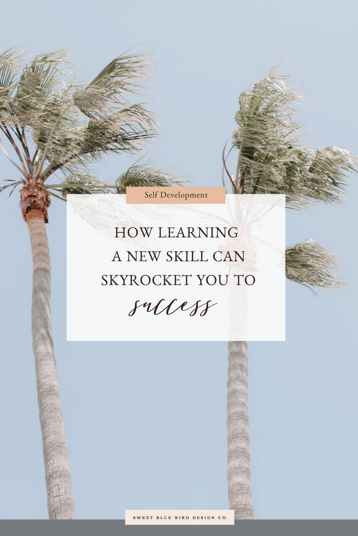 How learning a new skill can skyrocket you to success.png