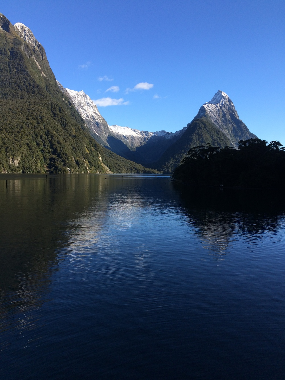 Travel Milford Sound.JPG