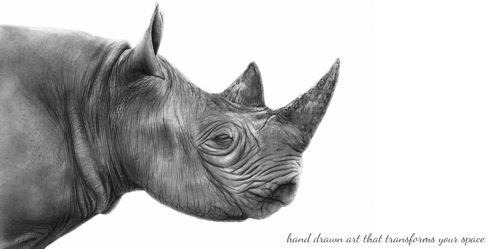 Zaire the Rhino, by Andrew Howells