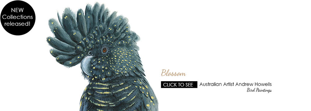 Blossom the Black Cockatoo by Australian Artist Andrew Howells for Stampede Style www.stampedestyle.com