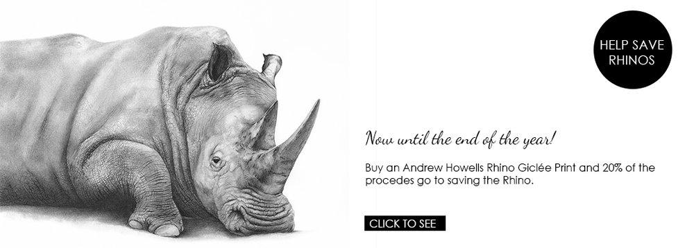 Andrew Howells - hand drawn Rhino Baako