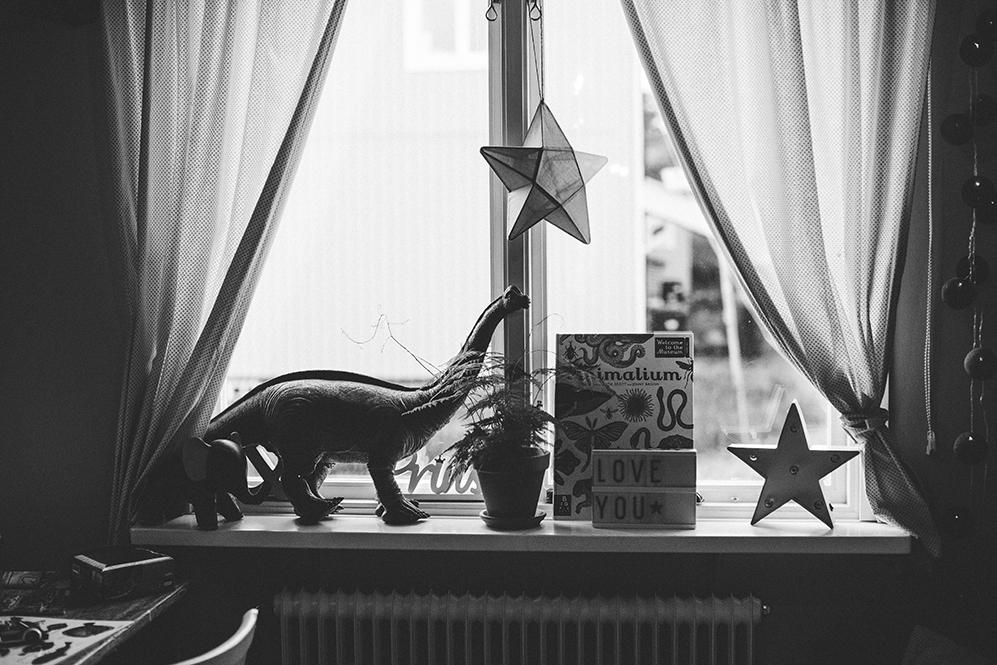 Lifestyle-fotograf_Stockholm_Evelina_Hinds_10.jpg