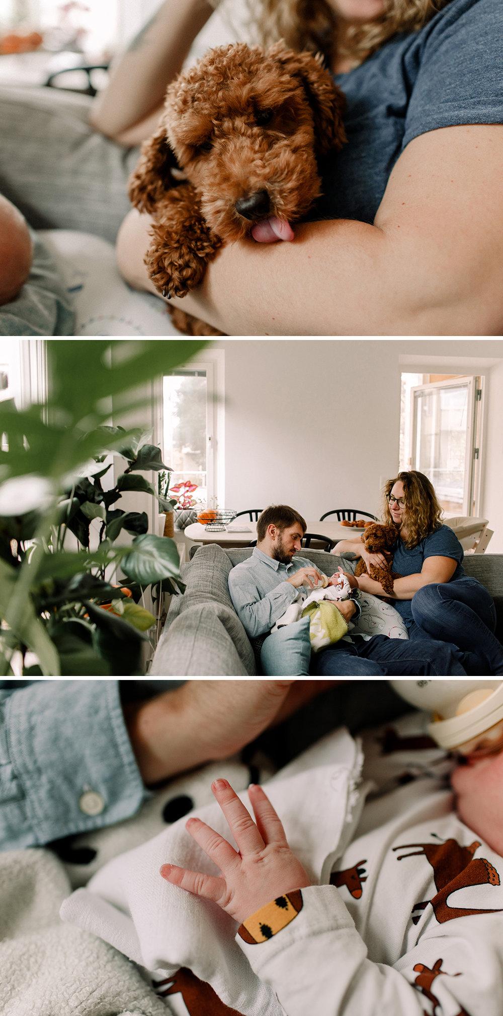 Newborn_Nyfoddfotografering_Stockholm_Familjefotograf_5.jpg