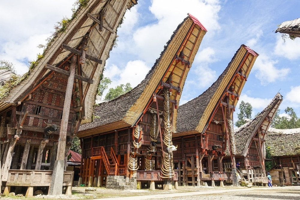 Toraja , source: google