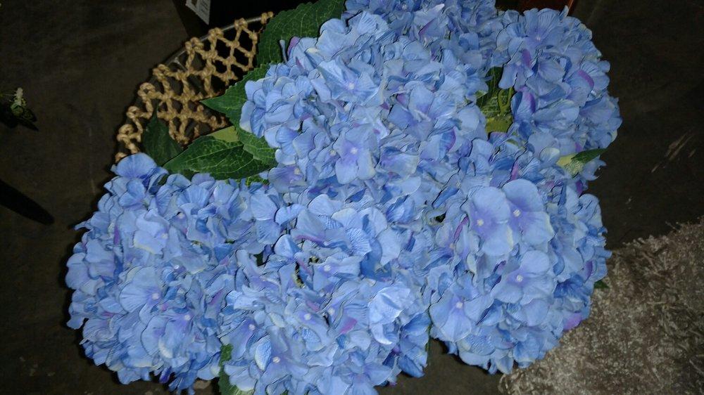 Blue hydrangea!