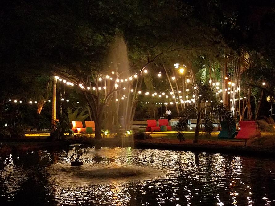 The Botanical Garden, incredible outcome and beautiful venue.