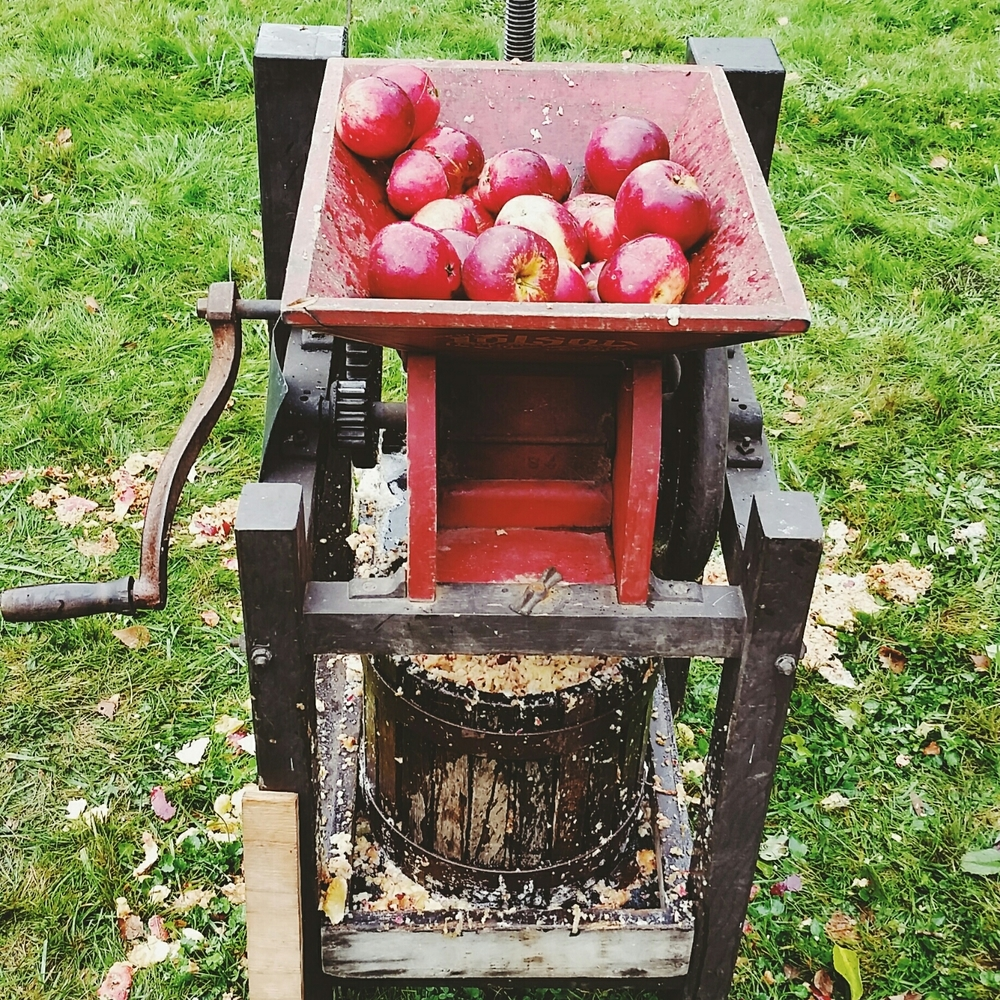Pressing cider is a Norsen family fall tradition
