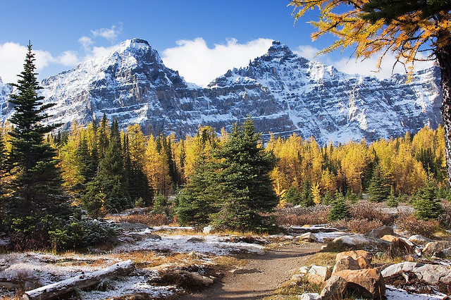 Larch Valley - photo by Andy Simonds