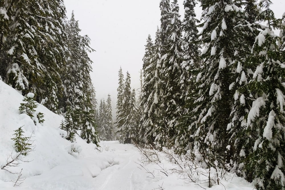 Snow covered Smithbrook road. A slightly different view from the drive up to Minotaur Lake in the fall!