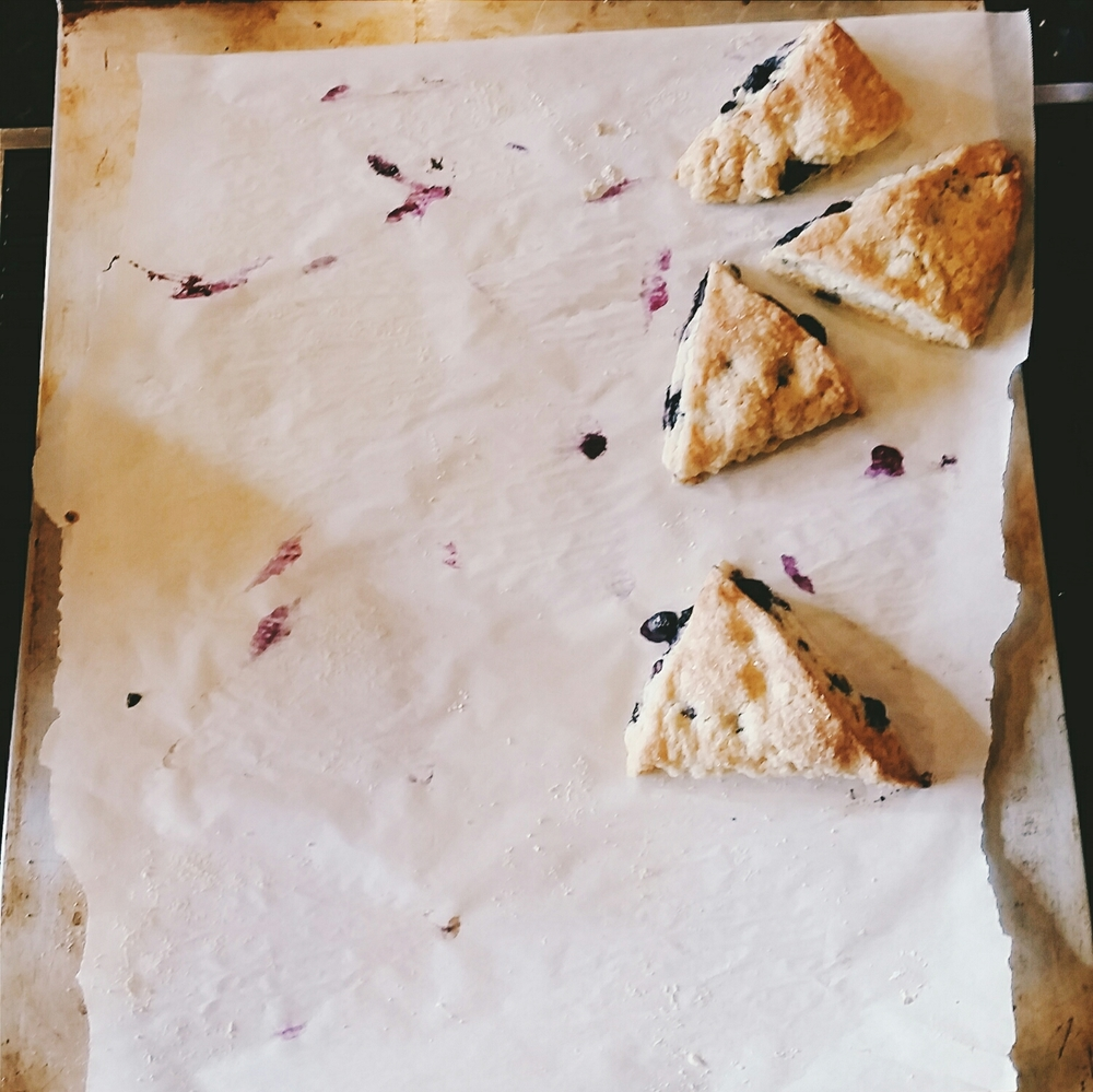 Fresh baked blueberry lemon scones disappeared fast at breakfast