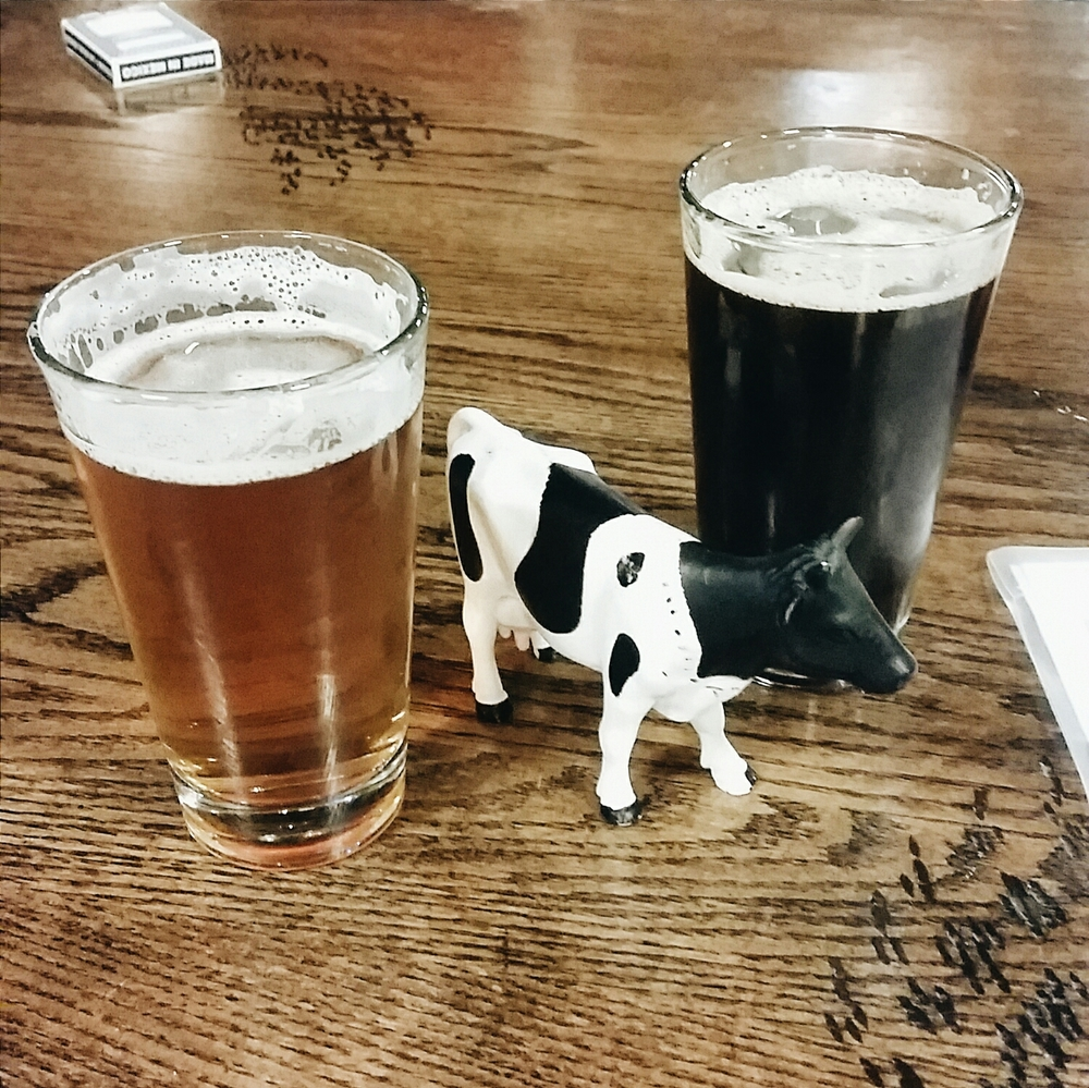 Post-hike beer and lunch at a brewery in Arlington. I loved their system for tracking the tables - a plastic animal toy on each table!