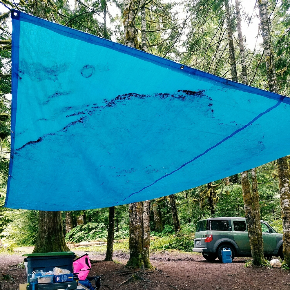 When camping in Washington, we bring own own blue skies!