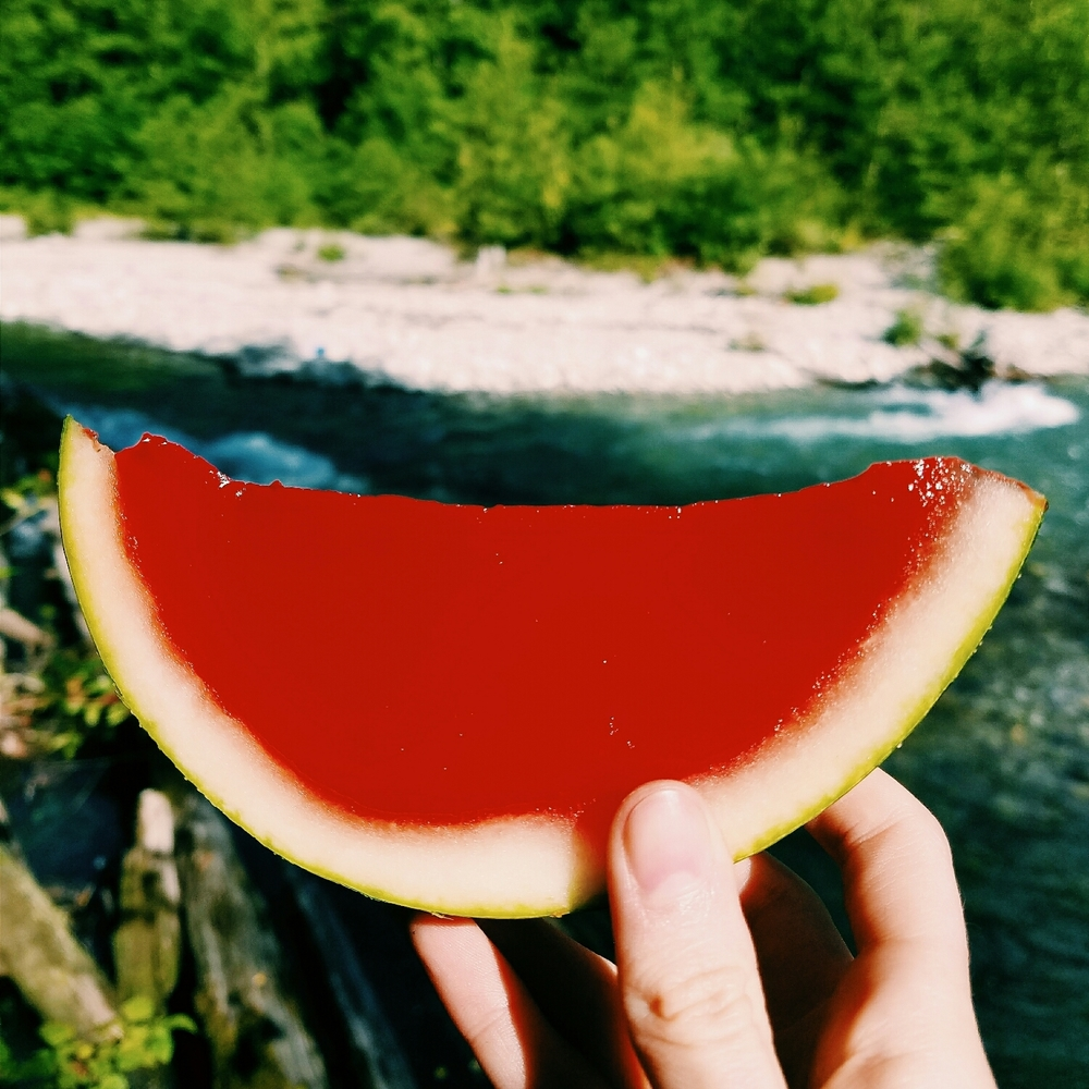 Watermelon jello shots.