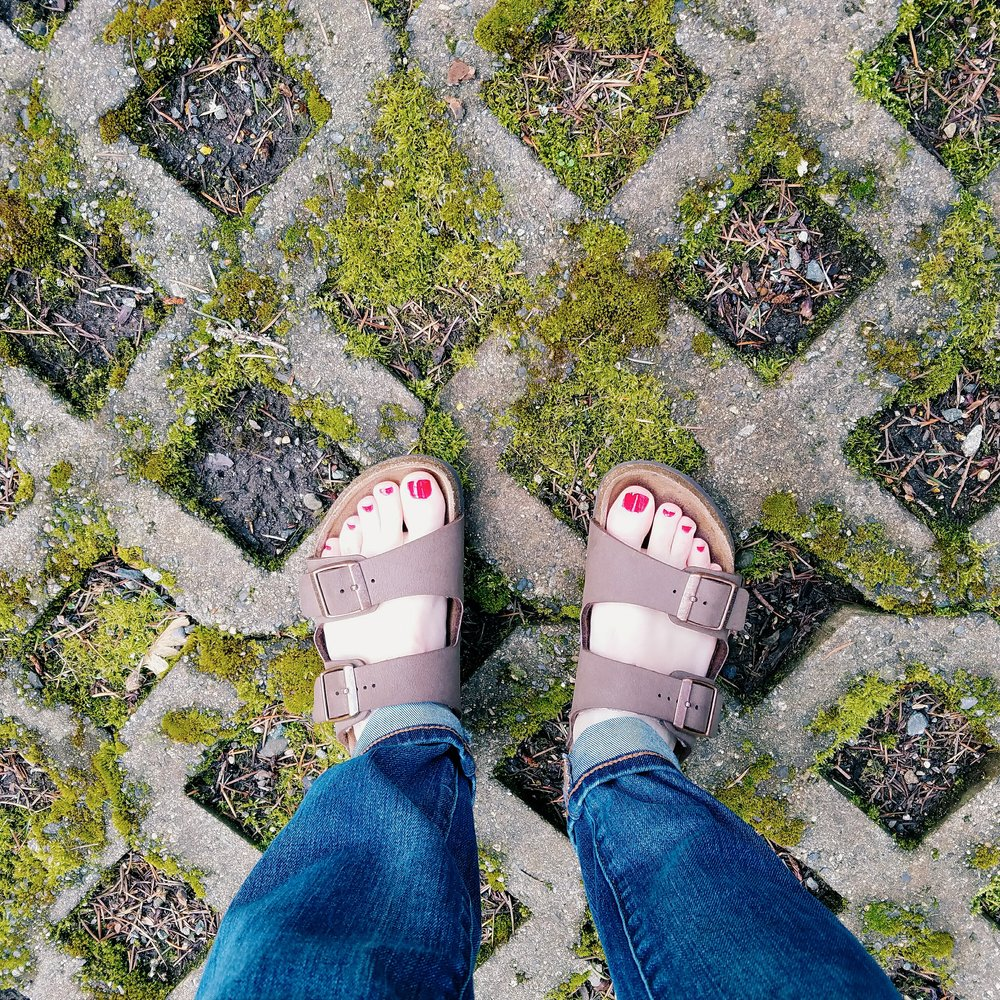 Look down: spring eidtion