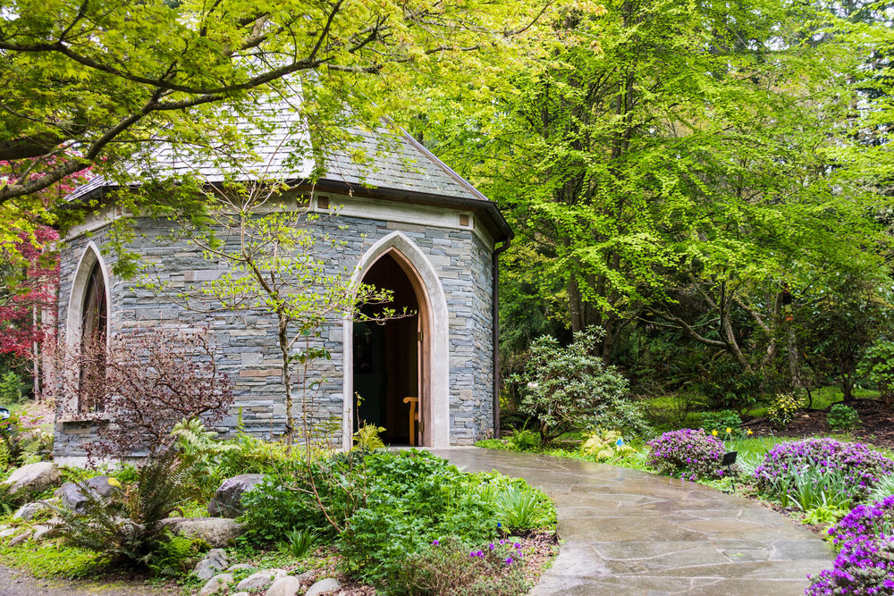 Meerkerk Gardens — tiny pines