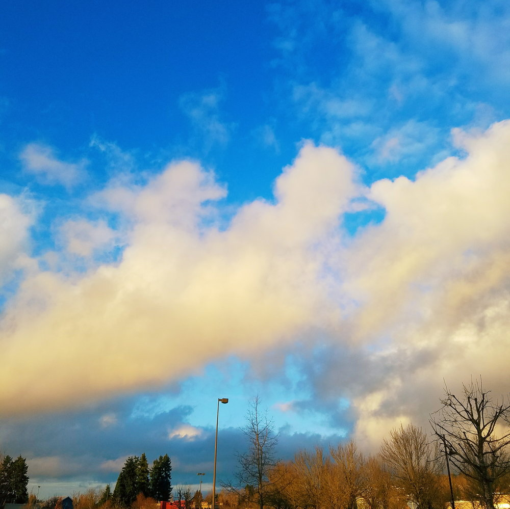 late afternoon winter light makes even a grocery store parking lot pretty