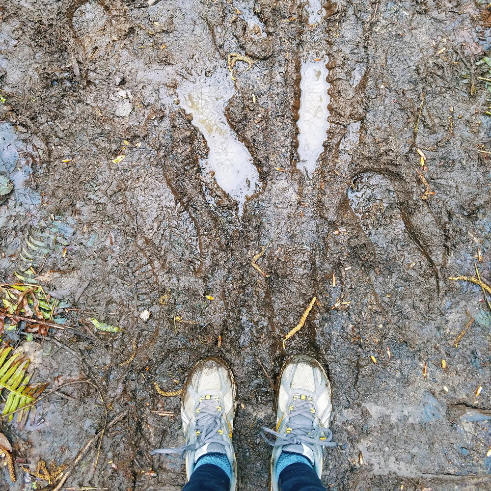 Mountain bike trails in the spring = one giant mud pit!