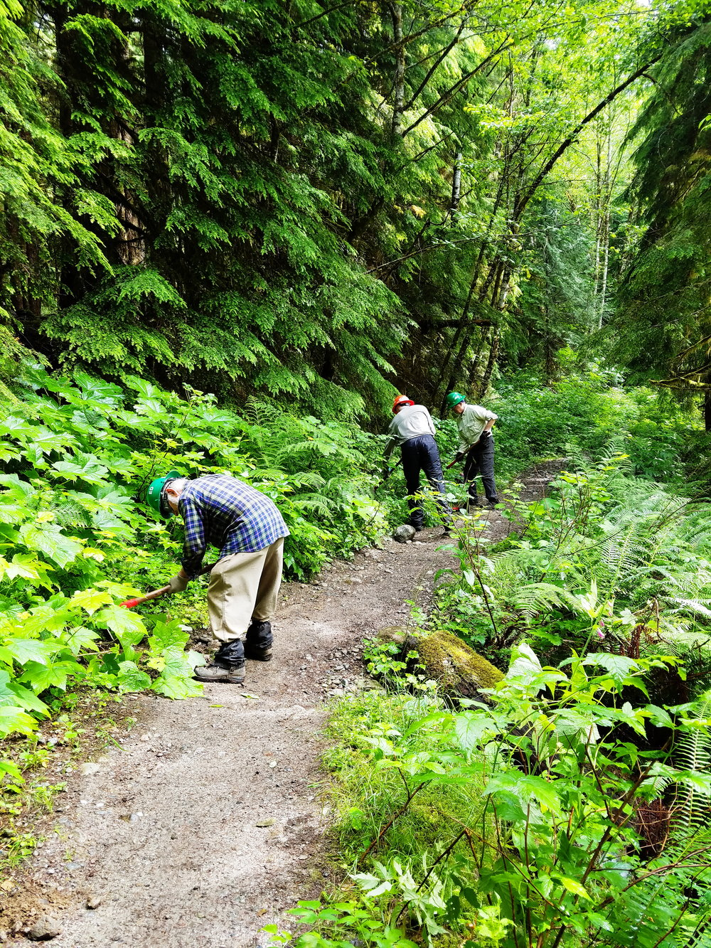 Sunday - before our crew started the work of repairing a short stretch of trail eroding downslope