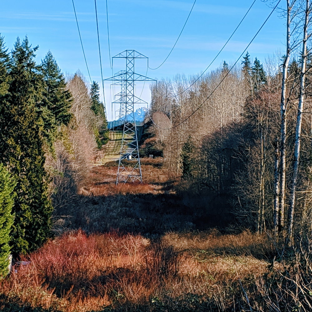 Red branches and peeks of peaks on the Powerline Trail