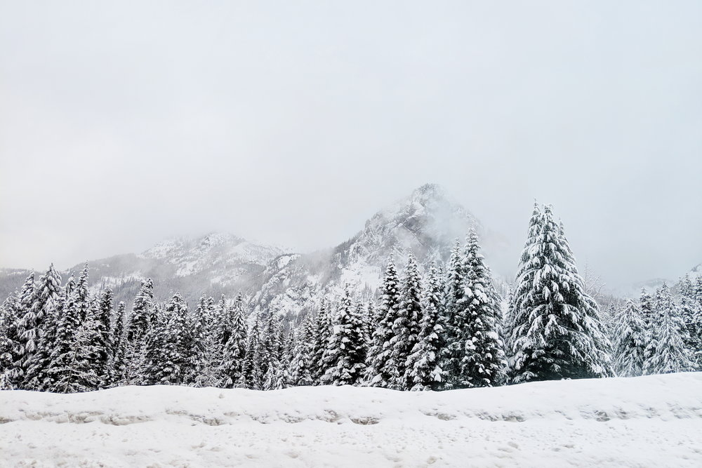 Snoqualmie Pass views are lovely any time of the year, but I think winter is my favorite!
