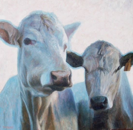 dan-mcwilliams-too-blue-cows.jpg