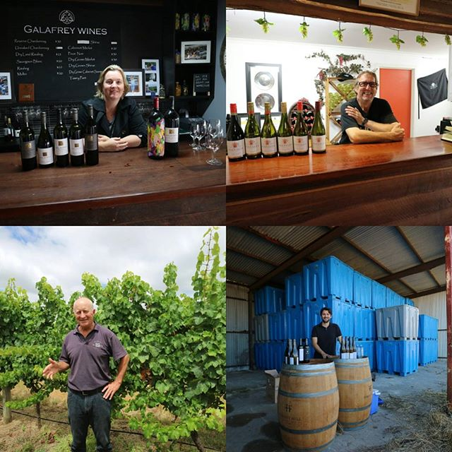 Four wineries, many exceptional wines,  #foresthillwines #westcapehowewines #galafreywines #wignallswinery #justanotherdayinwa