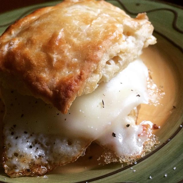 The follow up usage.Buttermilk biscuit w/fried egg and american.