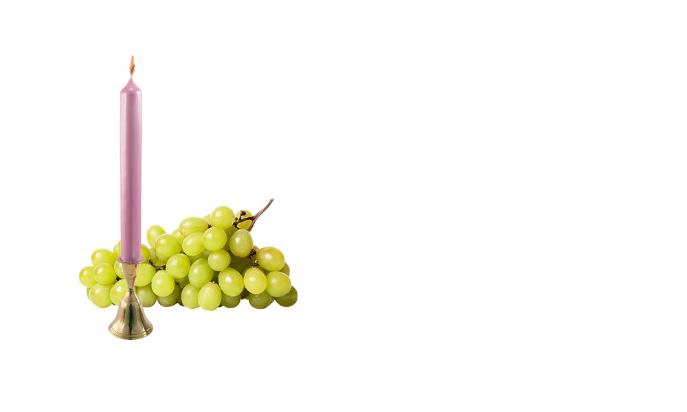 tour-grapes.jpg