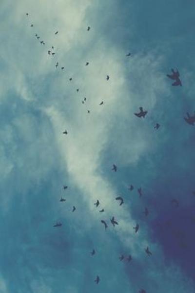 blue skies.jpg