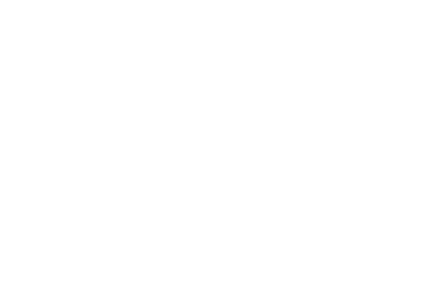 Forerunner Entertainment Mobile DJ  Dallas/Fort Worth