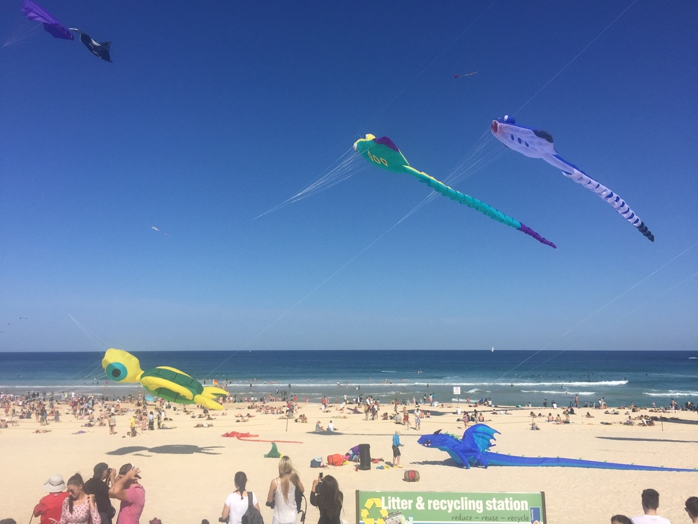 Wind Festival at Bondi Beach