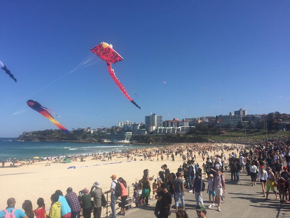 Wind Festival at Bondi Beach