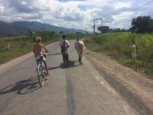 Riding around Inle Lake.