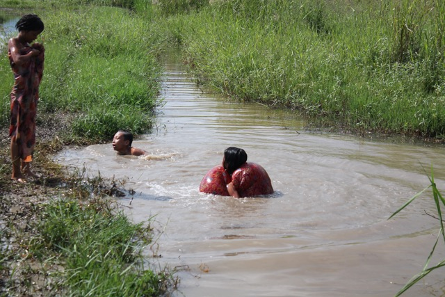 We got lost and came across this family swimming in their rice fields.
