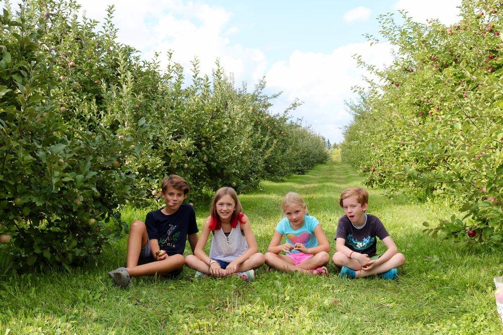 apple picking crew.