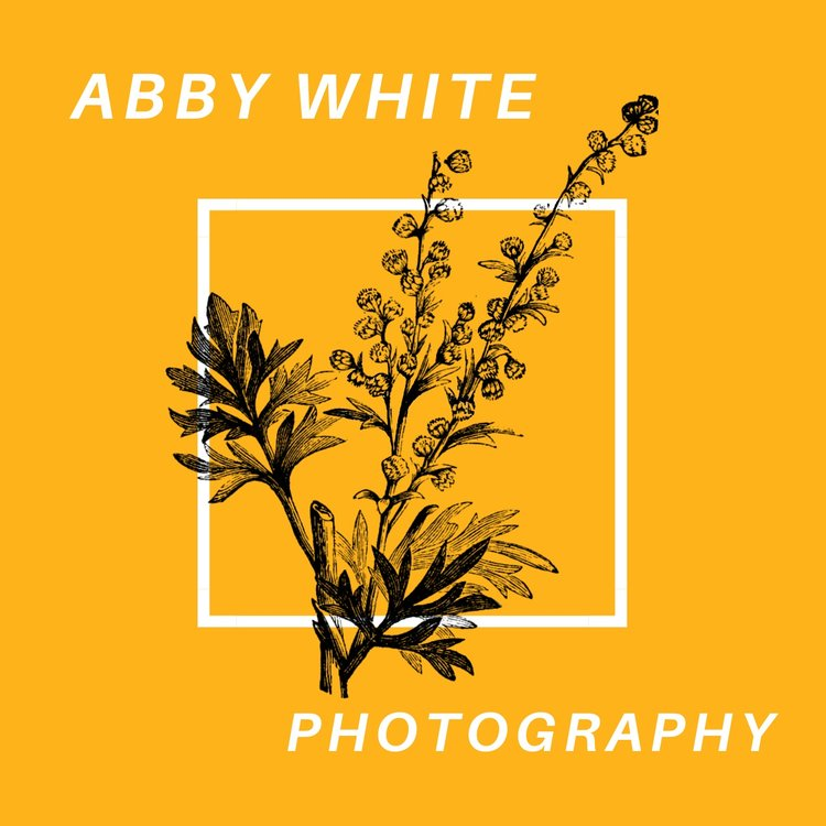 Abby White Photography
