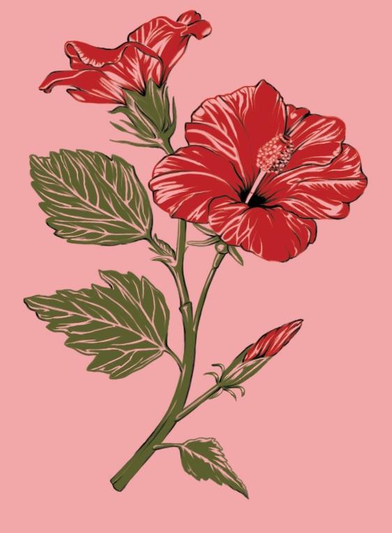 2107_LOFI_hibiscus.jpg