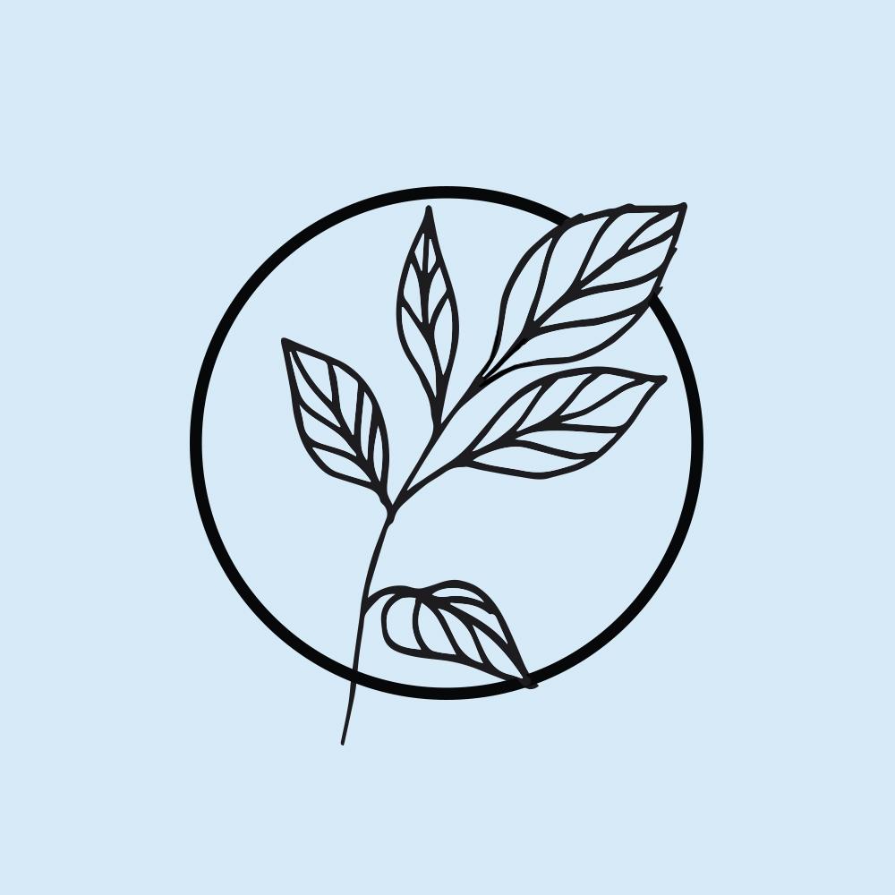 plant_2.jpg