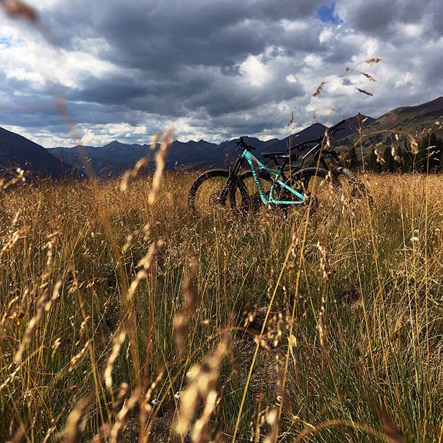 Finally got to Crested butte to check out their sweet sweet trails. #mountainbikecolorado #coloradotrails #crestedbutte #bikingat11k #ridethe401 #401trail #alpinebiking #altitudelatitude #mtblife