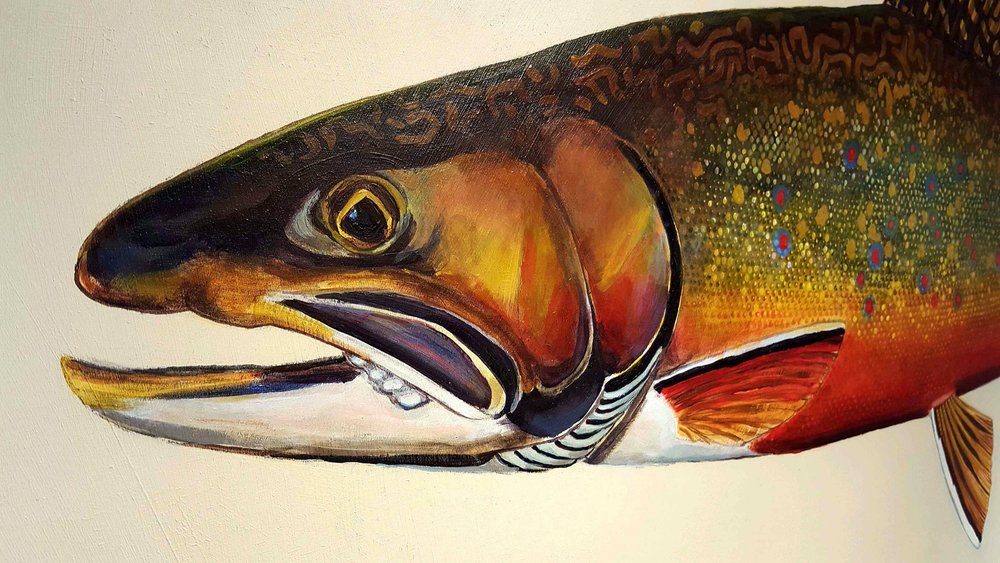 """Brook Trout on Board,"" Karen Talbot"