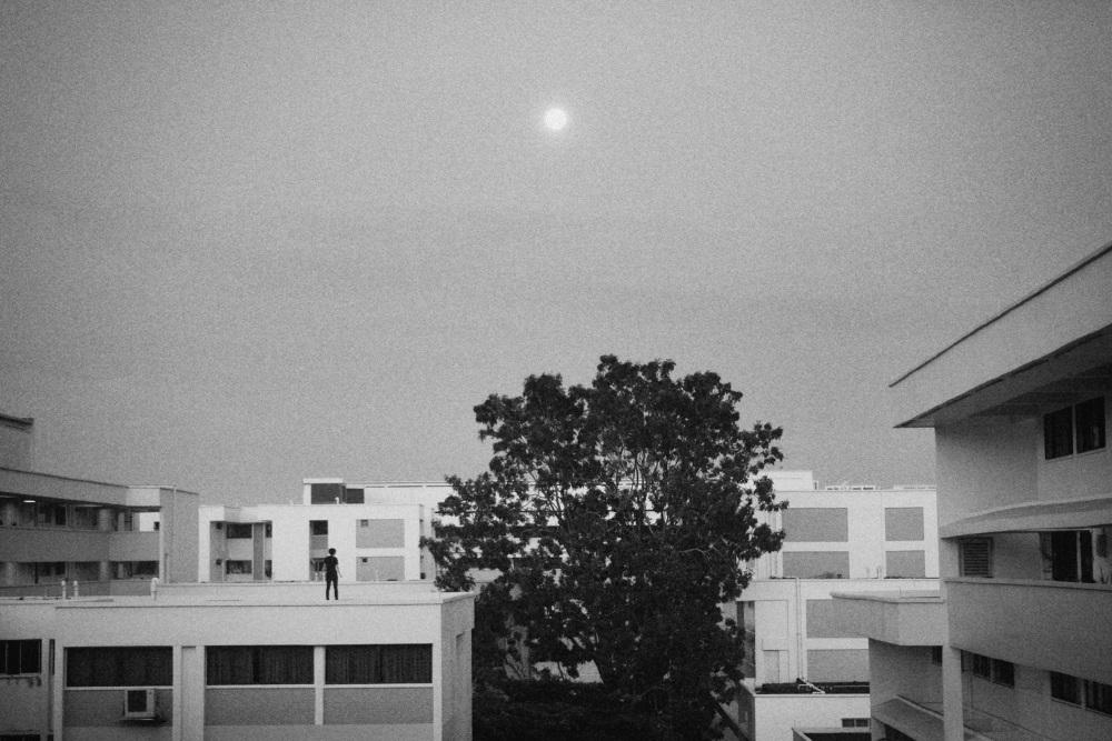moondancebnw_1000.jpg