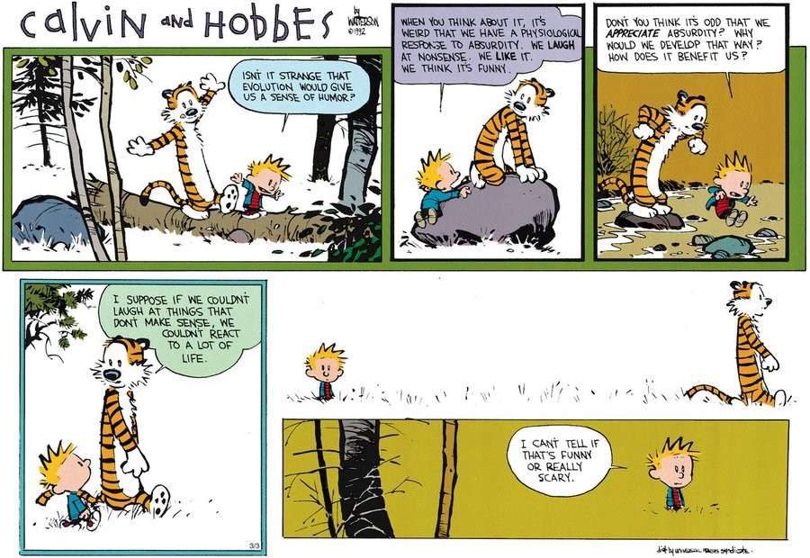 calvin and hobbes.jpeg