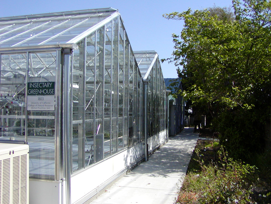 0101f_UCB Insectary Greenhouse.jpg