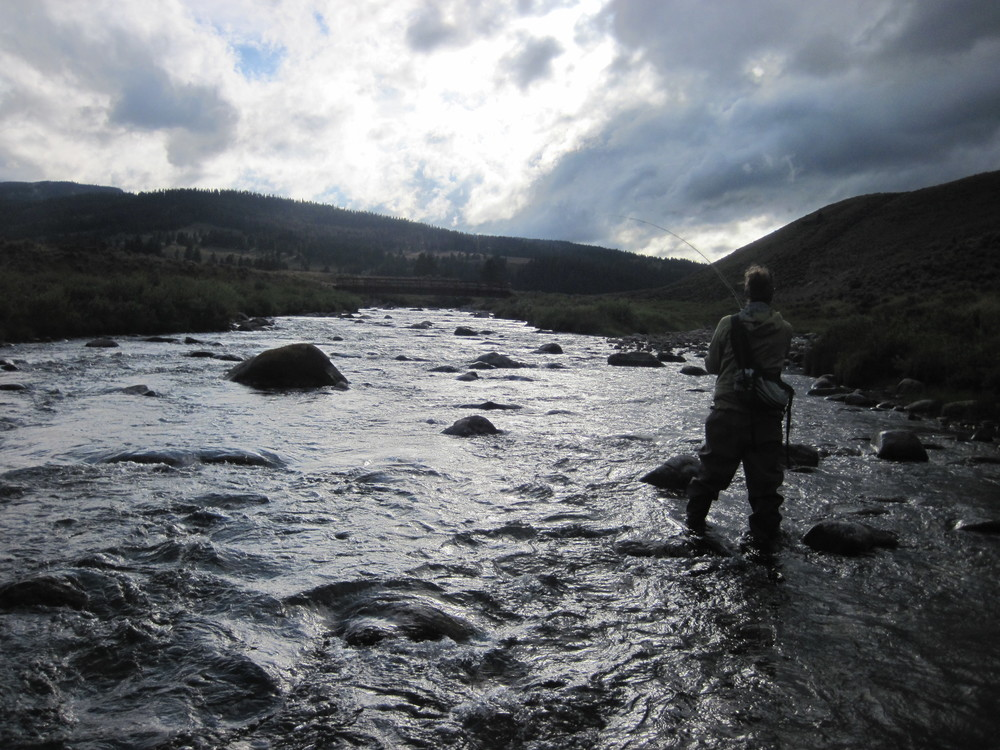 Wading upstream for trout in Montana