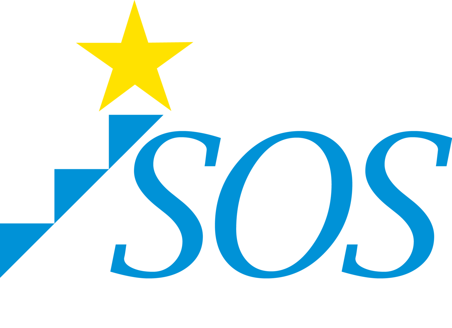 Student Organizing Solutions