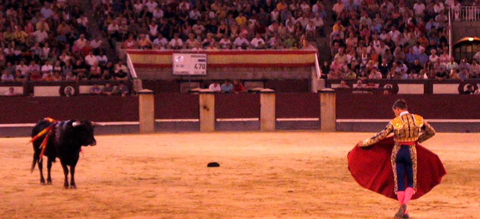 Bull and matador at Las Ventas, Madrid.